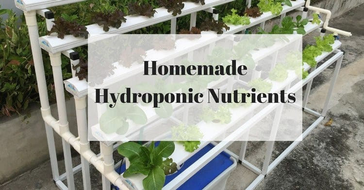 DIY: How To Make Homemade Hydroponic Nutrients