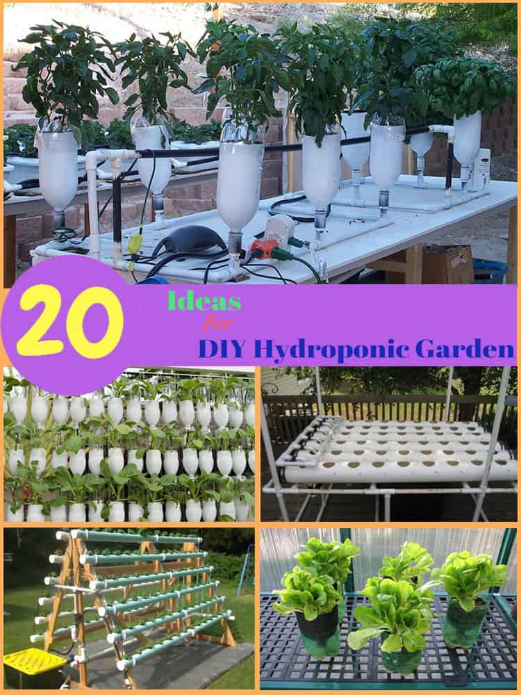 20 Incredible Ideas For Diy Hydroponic Garden The Rex Garden