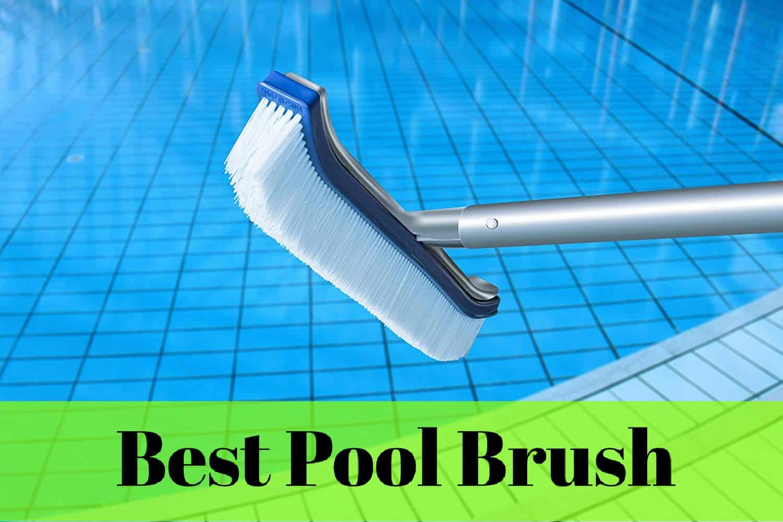 best pool brush