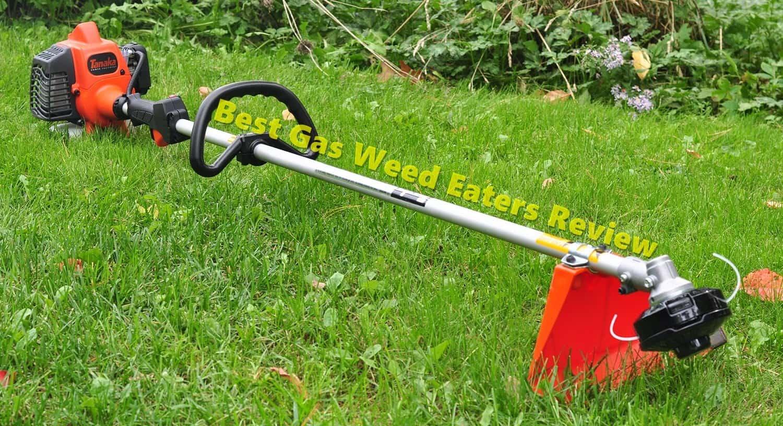 10 Best Gas Weed Eaters 2020 The Rex Garden