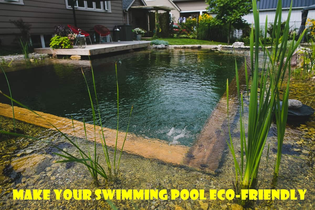How to Make Your Swimming Pool Eco-Friendly | The Rex Garden