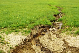 Control the Erosion of Soil in Your Garden