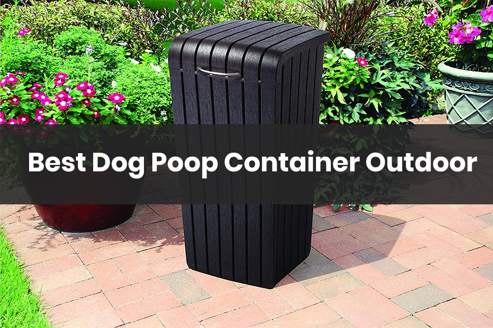 dog poop container outdoor