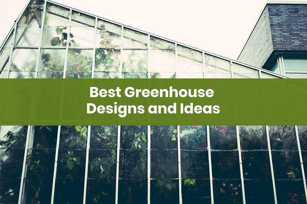Best Greenhouse Designs and Ideas